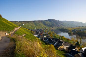 Panoramablick Ürzig-Mosel