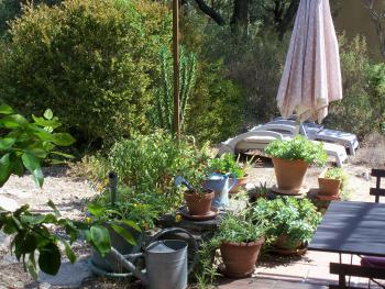 terrasse petit mazet