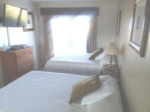Two Beds Micro-Quad room-Deluxe-Ensuite with Shower-Mountain View