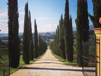 Viale di accesso con cipressi