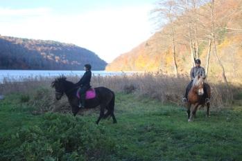 Parc animalier du Hérisson randonnée à cheval