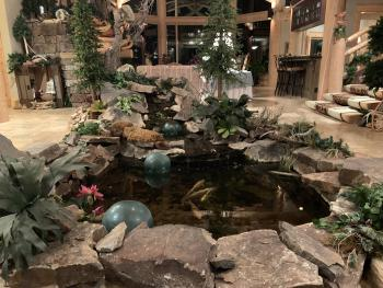 Our Koi Pond Welcomes you!