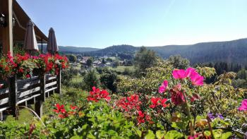 Le village de Liézey en été depuis la terrasse