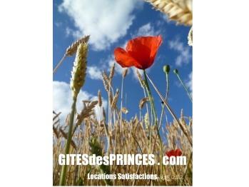 GitesdesPrinces.com