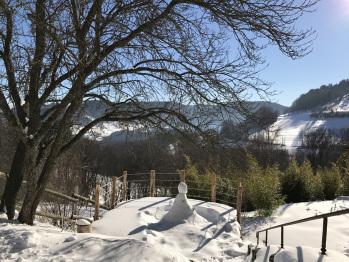 Vue  plein sud , sur la terrasse et son bonhomme de neige.