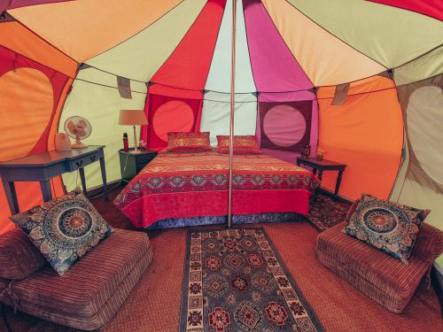Yurt-Classic-Shared Bathroom-Park View-GLAMPING YURT TENT - Room Only