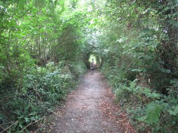 Scenic walks abound