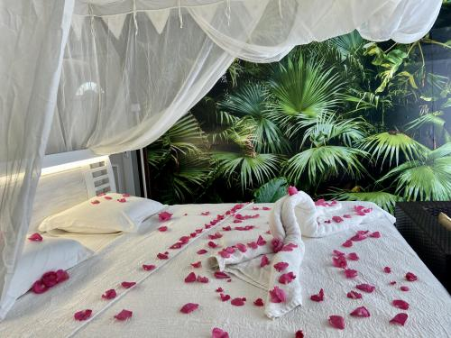 Cabanon Jungle Paradise + Petits Déjeuners