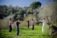 Qi Gong classes at Armonia Alpujarra