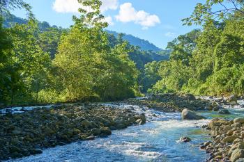 River access via jungle trails