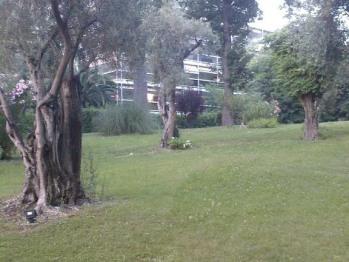 Studio-Famille-Salle de bain-Vue sur Jardin