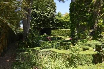 Vue du jardin secret
