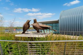 Chestnut court - Rushden Lakes - great place to spend an evening