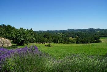 View of the valley Domaine de la licorne