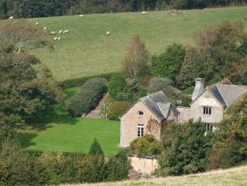 Sheep grazing near Ranscombe