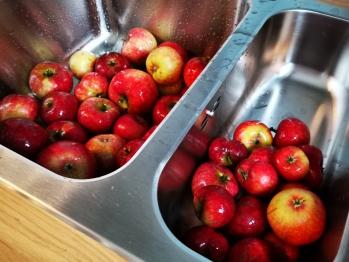 Gemeinschaftsküche - Kombüse - Apfelernte 2019