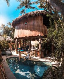 Tree House-villa 1 chambre-Villa-Ensuite with Shower-Park View - Tarif de base