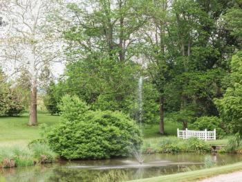 Enjoy a walk around our beautiful pond, complete with a bubbling fountain!