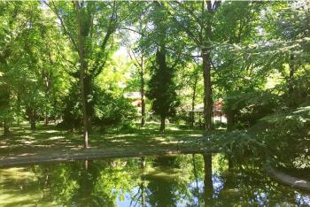 Le grand bassin, au fond du jardin