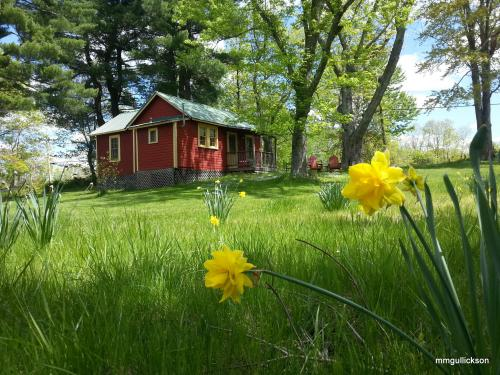 the Red Cottage in Spring