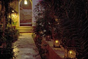 Entrée dans le jardin la nuit