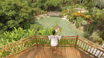 Vue sur le jardin et la cascade du restaurant panoramique