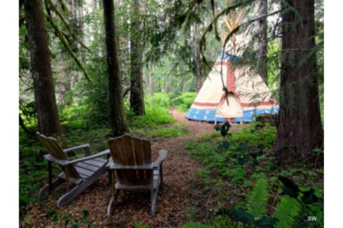 Tipi-Shared Bathroom-Queen-Woodland view-Calapooya Tipi
