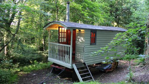 Hut-Classic-Private Bathroom-Woodland view