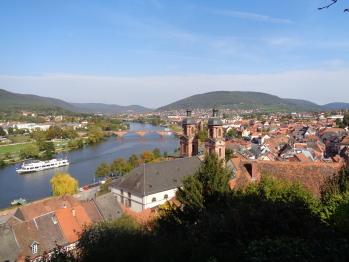 Miltenberg-Blick von der Burg