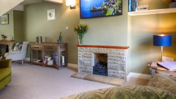 Tv room with gas fire