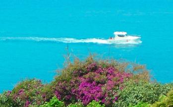 Meer Jacht Blumen © Ferienwohnung Casa Belle Vacanze