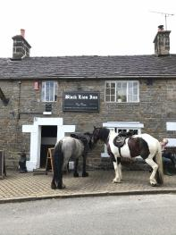 Front of pub with horses
