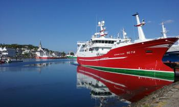 Magnificent trawlers in Killybegs harbour