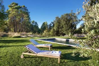 La piscine est entourée d'oliviers et de pins