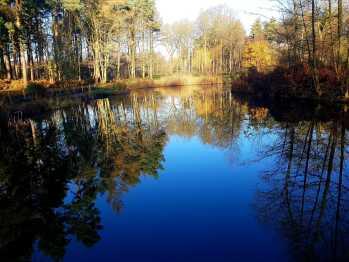 Fishing Lake in Autumn