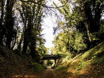 The Meon Valley Trail