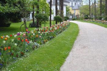 Tarbes Jardin Massey