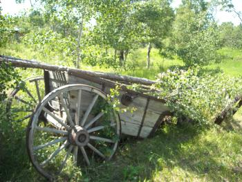 Historic wagon on the property
