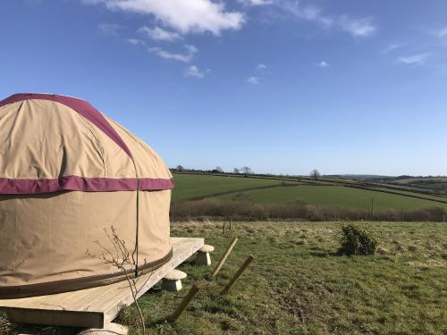 Nomad -Luxury-Yurt-Ensuite with Shower-Countryside view