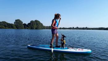 Doggy Stand up Paddle Board Experience
