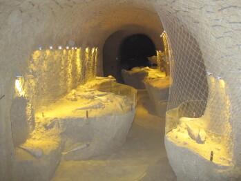 Les Collinades - la Cave aux Coquillages