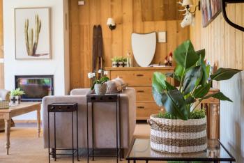 un salon cosy avec sa cheminée