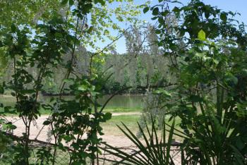 Au jardin, vue sur la Garonne