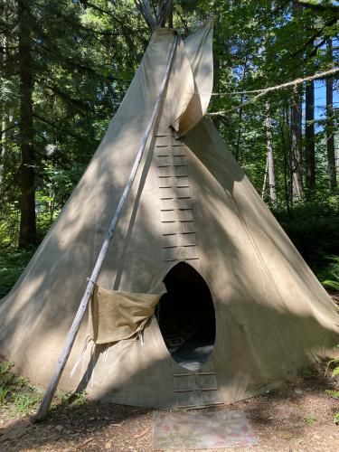 Sacagawea -Tipi-Shared Bathroom-Queen-Woodland view