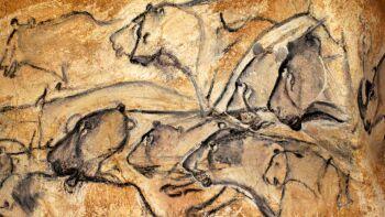 La Grotte CHAUVET à 15 mn des gîtes