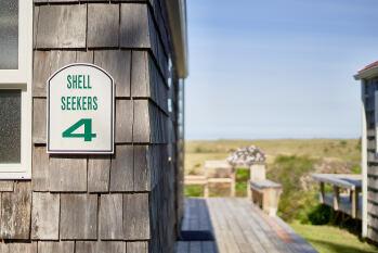 #4 Shell Seekers