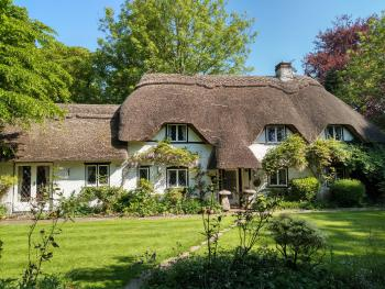 Thatched Eaves - Cottage
