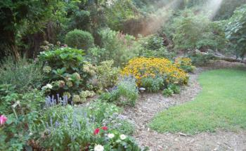 Property Grounds-GARDENS