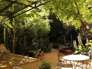 Le jardin vue de la terrasse