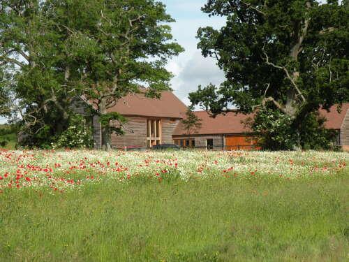 South Park Farm Barn seen from across its wildflower meadow